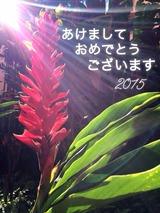 2015-01-15-19-16-18