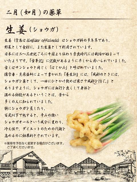 yoichi_img06
