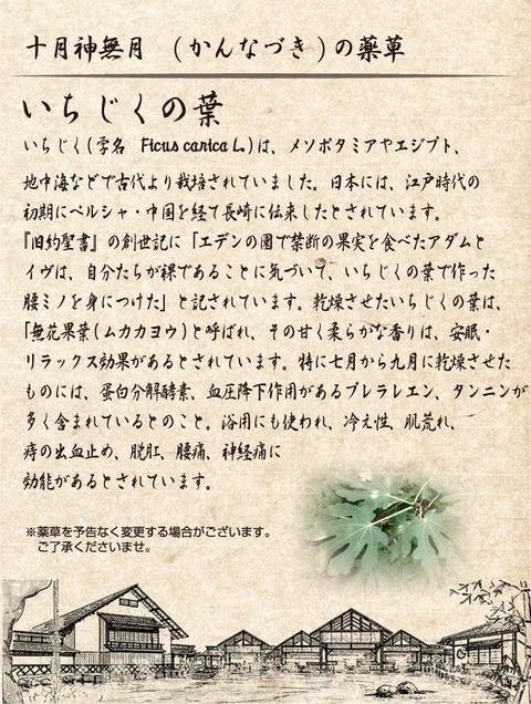 薬草蒸し風呂201810