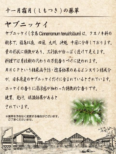 yoichi_img05