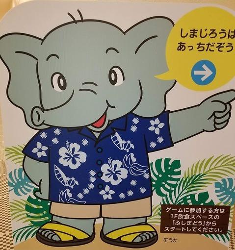 しまじろう象