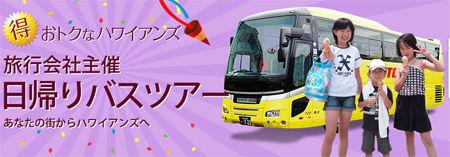 bus_toor