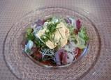 新ナンクー:豆腐サラダ