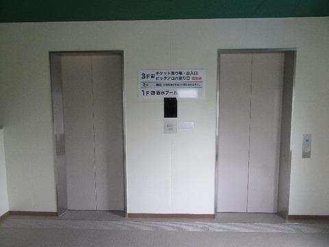 ブログ用ビッグアロハエレベーター