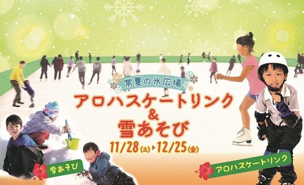 常夏の氷広場 (1) (1)