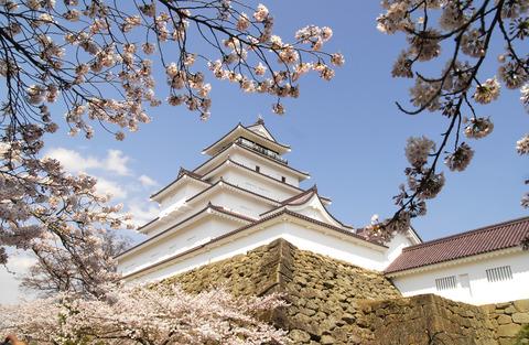 11sakura16鶴ケ城