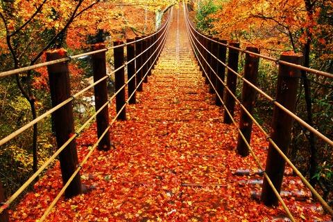花貫渓谷紅吊り橋