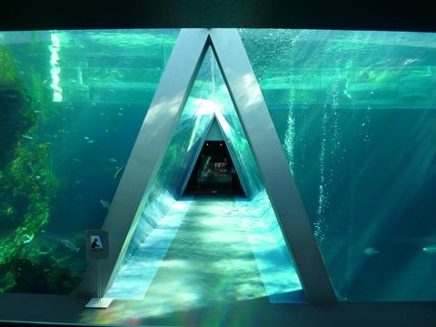 三角水槽①