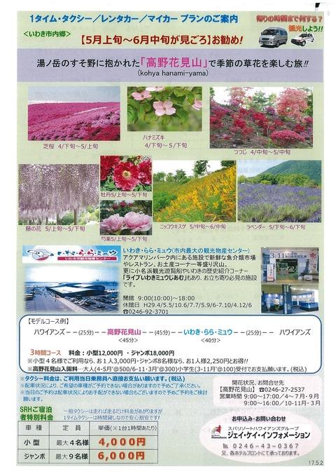 高野花見山5-6月