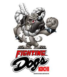 character_kochi