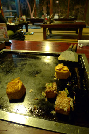tofu13