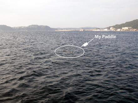paddle01
