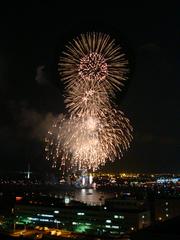 firework10