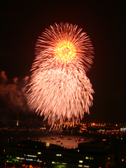 firework08