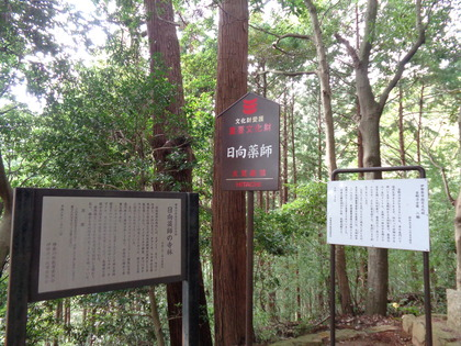 2019-11-02山楽会11月定例会(日向薬師、日向山ほか)07