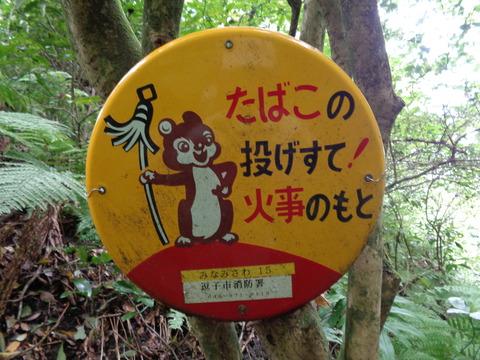 2018-10-03葉山・山楽会 森戸川源流(南沢)探訪27