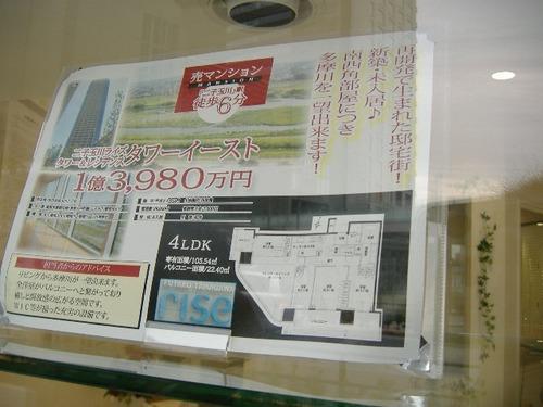 d558c641.jpg