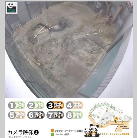 201712192シャンシャンライブ映像