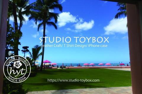Hawaii Design_URL