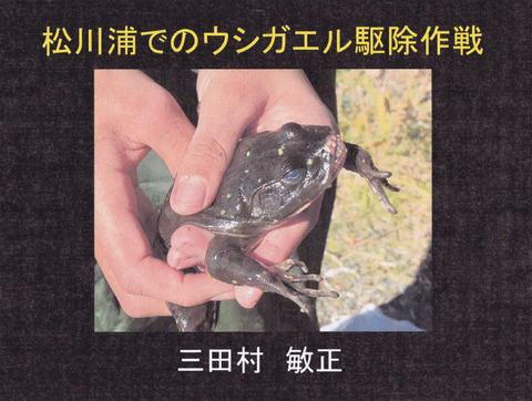 講演スライド(P1)
