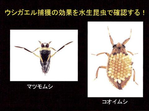 講演スライド(P4)
