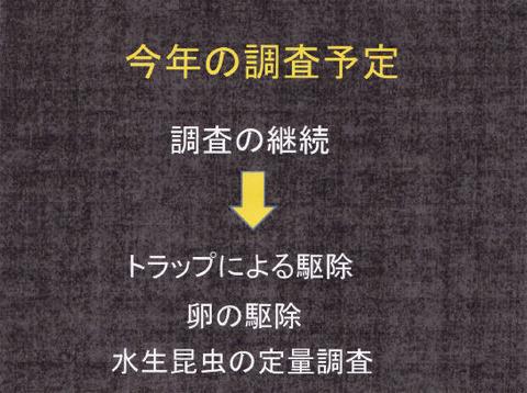 講演スライド(P12)