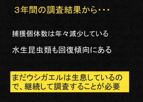 講演スライド(P11)