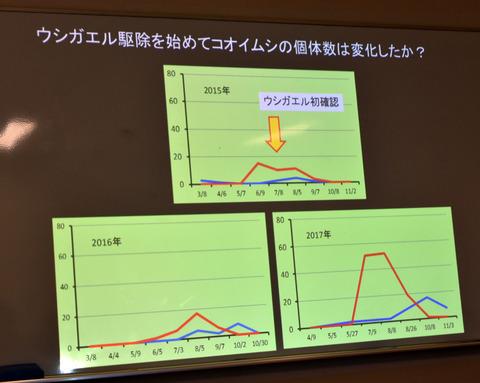 ⑨ ウシガエル捕獲数とコオイムシ個体数の関係