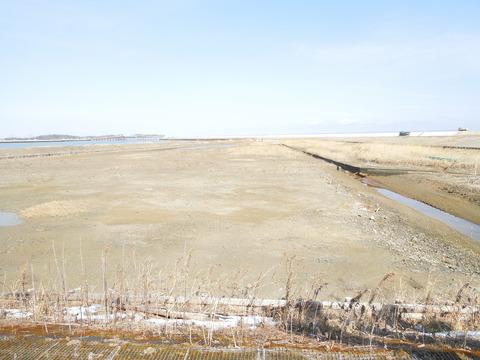 ⑦ 古湊跡の湿地(5757)