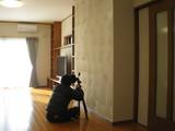 プロカメラ3