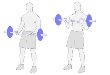 barbell_curl_2