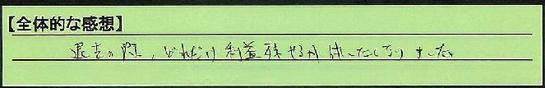13zentai_kanagawakensagamiharashi_hj