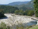 白川郷のつり橋。。。