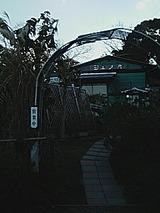 110dac87.jpg