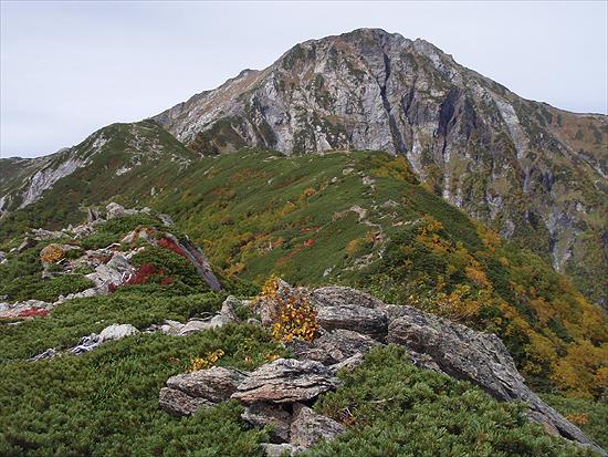 池山吊尾根からの北岳バットレス