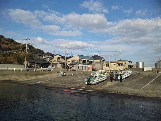 和田浦漁港 「魚」