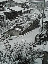 9dcbd445.jpg