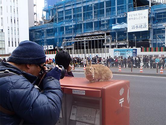 東京マラソン歌舞伎座前