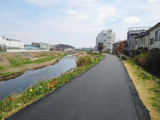 鶴見川支流の恩田川