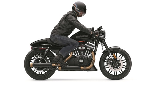 XL1200X_VividBlack_alt_rider