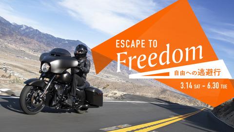 social asset escape_to_freedom