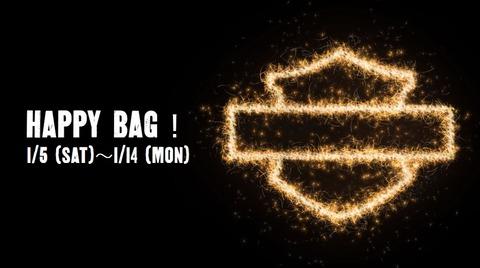 HAPPY BAG2019-2