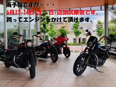 IMG_0756-1