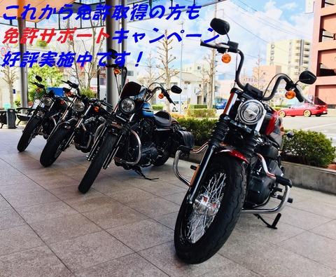 IMG_6122-1