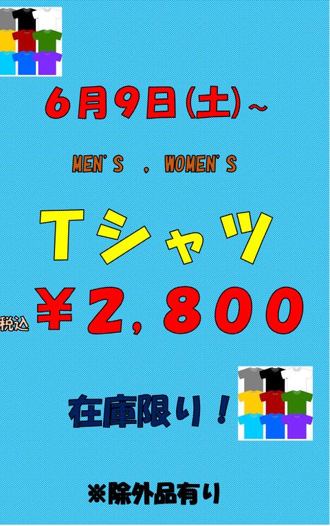 20180609Tシャツ2,800