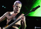 flea,-michael-peter-balzary,-red-hot-chili-peppers-179382