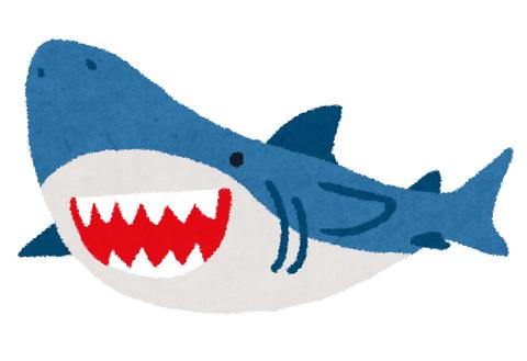 【画像あり】サメ映画、とうとうここまで来るwwwwwwww