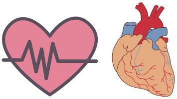 心臓・狭心症
