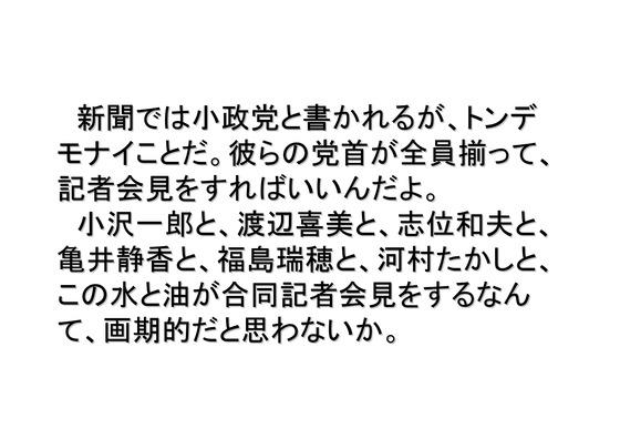 総選挙第5弾・諸政党編_25