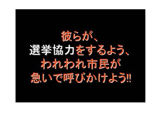 総選挙第5弾・諸政党編_29